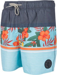 Rip Curl Volley Team Spirit Shortsit, Multico