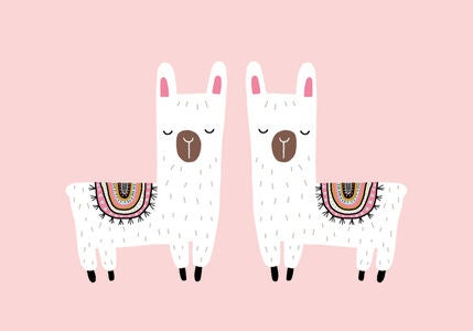 POPP Juliste 21x30, Twin Alpacas