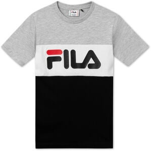 FILA Classic Day Blocked T-Paita, Light Grey Melange