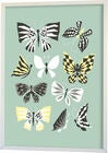 Littlephant Juliste Graphic Print Butterfly Family 50x70, Aqua