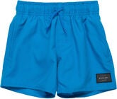 Rip Curl Wipeout Volley Uimashortsit, Blue