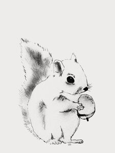 Lilou Lilou Juliste Squirrel 50x70, Creme