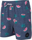 Rip Curl Volley Archipel Shortsit, Navy